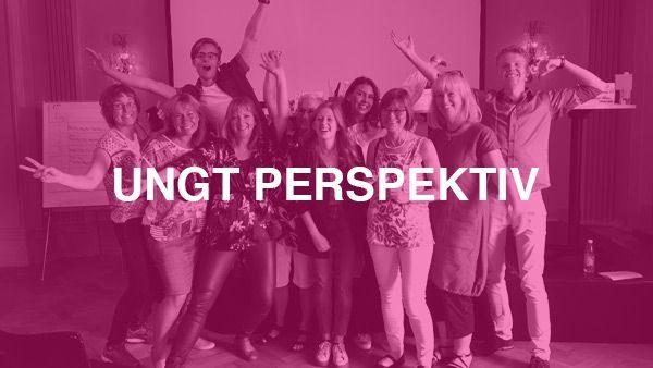 Ung Perspektiv – Projektet där vikten av ungas perspektiv lyftes